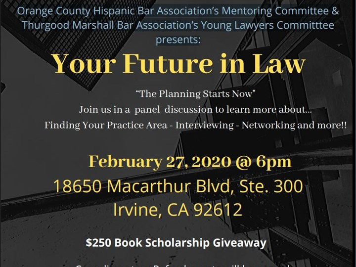 Your Future in Law